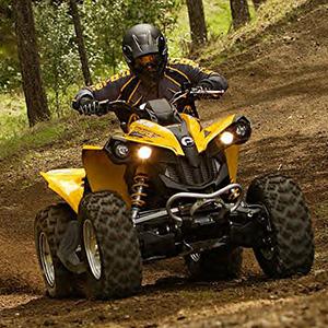 ATV Renegade 800